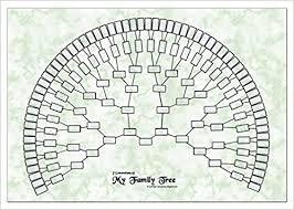 My Fan Chart Godridges Of Coventry Family Tree Chart 7 Generation Fan