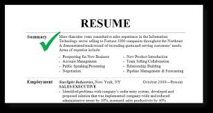 Resume Samples Summary ...