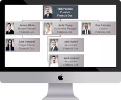 Best Org Chart Builder What Is The Best Software For Creating Organizational Charts