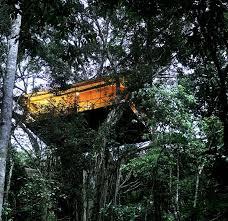 tree house resort. Vythiri Resort - Tree House