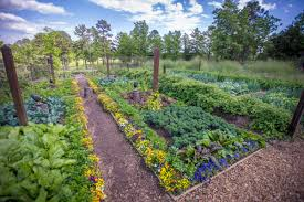 p allen smith s vegetable garden