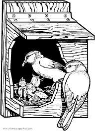 Small Picture Birds Coloring Sheet Birdhouse birds