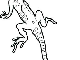 Leopard Gecko Coloring Pages Gecko Coloring Pages Leopard Colouring