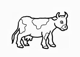 Small Picture Simple cow coloring sheets cow coloring pages Teachcolorcom