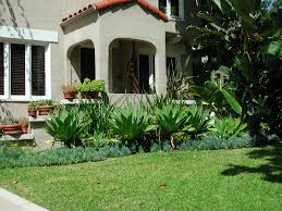 Landscape, Enchanting Green Landscaping Traditional Grass Plants For Front  Of House Ornamental Plants And Big