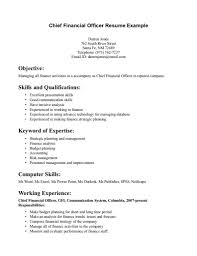 Cruise Line Security Officer Cover Letter Description For Resume