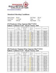 338 Win Mag Trajectory Chart Buffalo