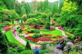 best flower gardens in houston kid 101