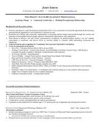 Collection of Solutions Youth Resume Sample With Summary