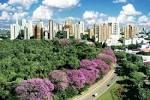 imagem de Maringá Paraná n-19