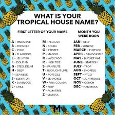 We Made You A Tropical House Name Generator Magnetic Magazine
