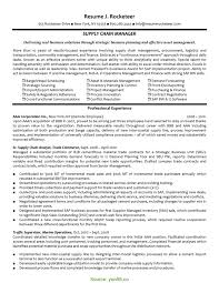 Interesting Interactive Project Manager Resume Web Project Manager