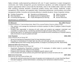 Cissp Endorsement Resume Example