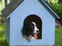step 7 afters 14 blue dog house closeup