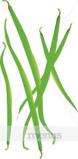 green beans clip art. Brilliant Art String Beans Clipart In Green Clip Art E