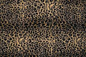cheetah print wallpaper black cheetah print wallpaper cheetah wallpaper cheetah wallpapers backgrounds wallpaper abyss black and
