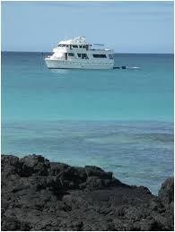 Image result for darwin backpacker cruise galapagos