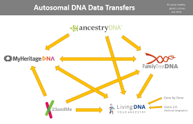 Which Dna Testing Company Should I Use Genie1