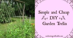 Small Picture Simple and Cheap DIY Garden Trellis Our Heritage of Health