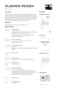 Driver Resume Samples Visualcv Resume Samples Database