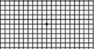 Amsler Chart Working Distance Check Your Vision The Amsler Grid Cnib