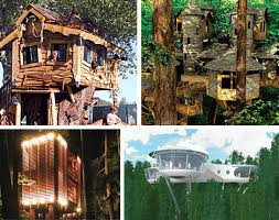 10 Amazing Tree Houses Plans Pictures Designs Ideas Kits