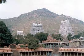 Image result for images of thiruvannamalai temple