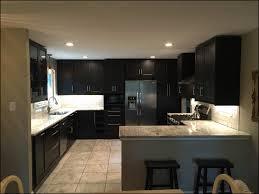 ikea kitchen reviews beautiful kitchen design ideas dark cabinets inspirational ikea kitchen