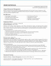 Job Resume Template Free Download Astonishing Great Professional