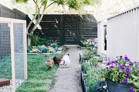 one room challenge backyard oasis