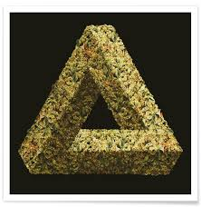Penrose Event Center Seating Chart Weed Penrose Triangle Poster