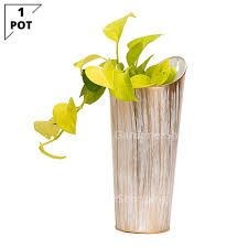 white decorative wall hanging planters