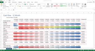 Cash Flow Excel Template Excel Template Cash Flow For 12 Months With Conditional