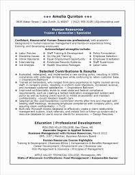 Professional Resume Formats New Best Resumes Examples New Executive