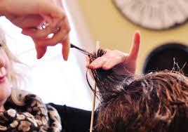 posh salon hair services