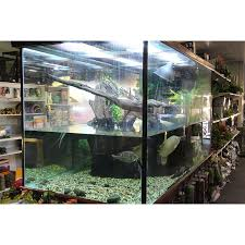 Turtle Tank Decor Huge Range Of Turtle Tanks Available Amazing Amazon