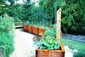pretty vegetable garden planters planters for vegetable garden planter box vegetable