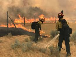 Image result for pictures of Firefighters getting ready to fight a forest fire