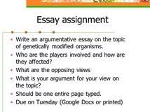 arguing essay essays on aids in africa college students need sample argument essay 1 click here to view essay the single parent struggle pdf document this is at least nominally preserved in our