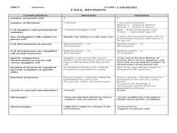 Mitosis And Meiosis Comparison Chart 75 Unmistakable Comparing Mitosis And Meiosis Worksheet Key