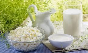 Почему скисает молоко Как проходит процесс скисания  молочные продукты