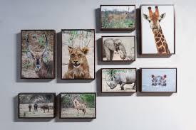 canvas float frames original photographs from africa
