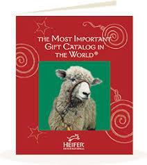 the heifer international gift catalog