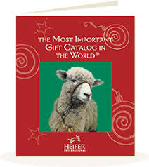 the heifer international gift catalog