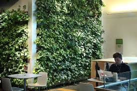 green wall office. Boost Productivity. Living Walls Green Wall Office