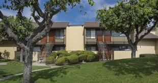 laurel tree building exterior