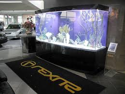 aquarium for office. With Its Modern Custom Cabinetry, This Large Aquarium Is A Perfect Fit For The Lexus Dealership. Office