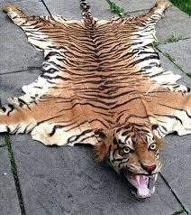 the tiger skin rug fur fake with