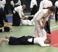 My First Aikido Camp – Biran Online