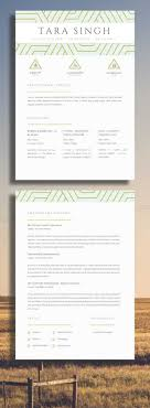Resume For Chef Sample Birthday Cards Free Purchase Order Template